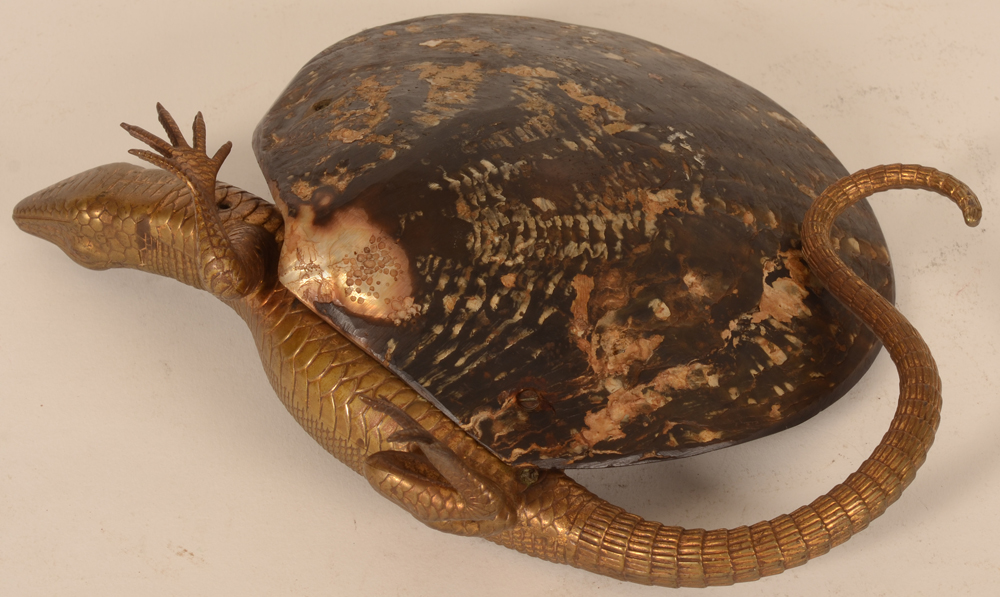 bronze lizard on shell — Back side of the shell