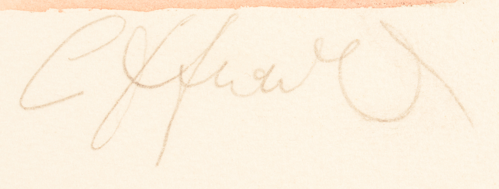 Camille D'Havé — Signature of the artist, bottom right