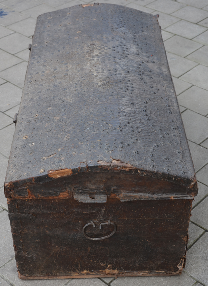 Spanish nail trunk — The right hand side of the trunk