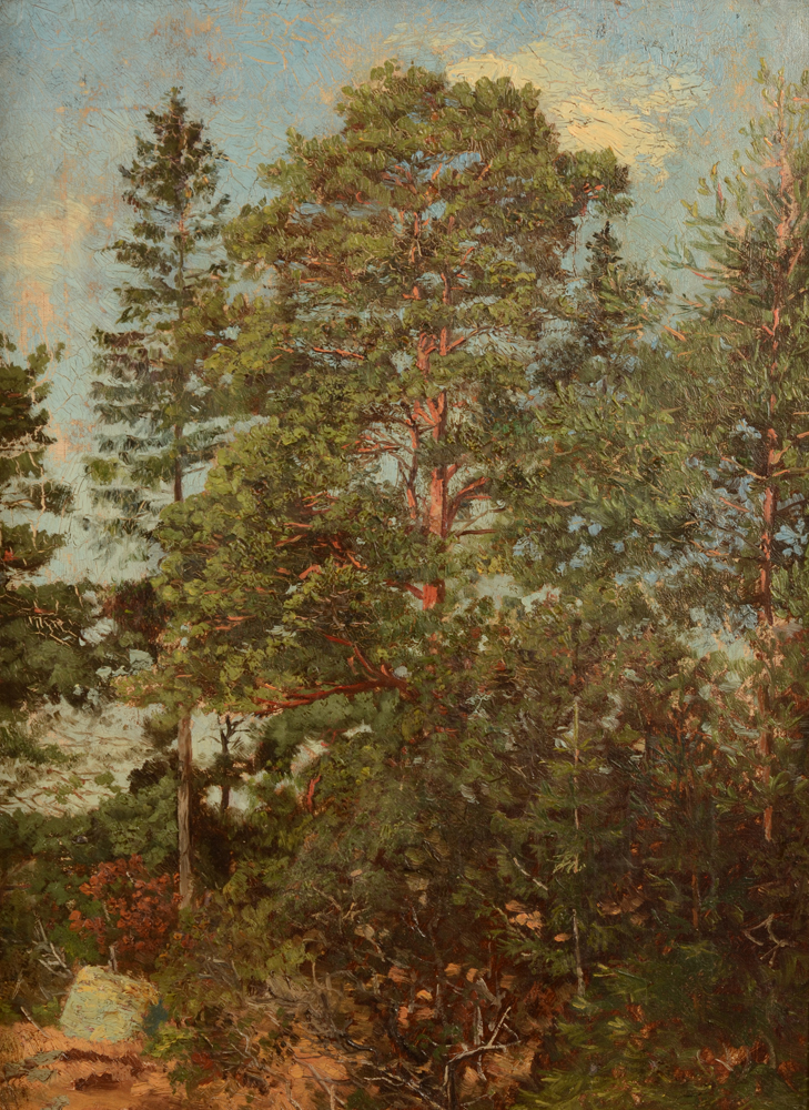 Unknown impressionist artist  — Canvas in good condition, some cracking due to siccative
