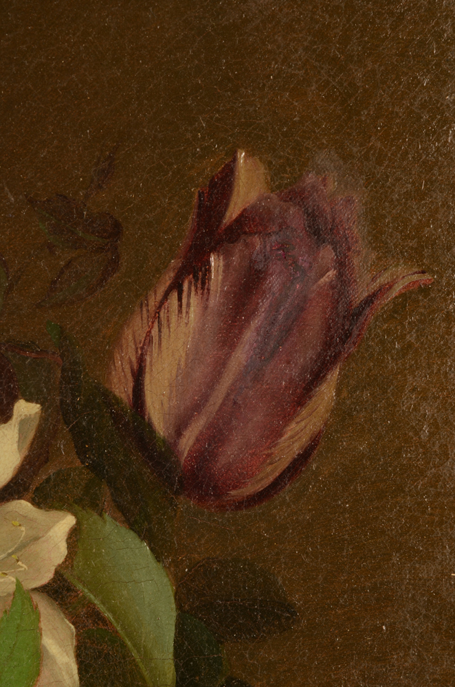 Williamson D. — Detail of an old restauration in the flower