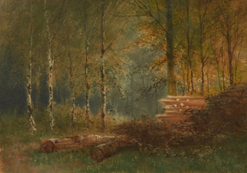 Jean Julien Godenne birches in the woods
