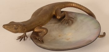 bronze lizard on shell