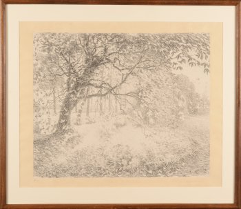 Emile Claus tree lithograph