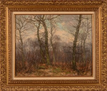 Louis Clesse forest view