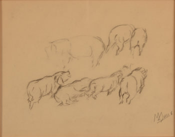 Modest Huys study drawing of pigs