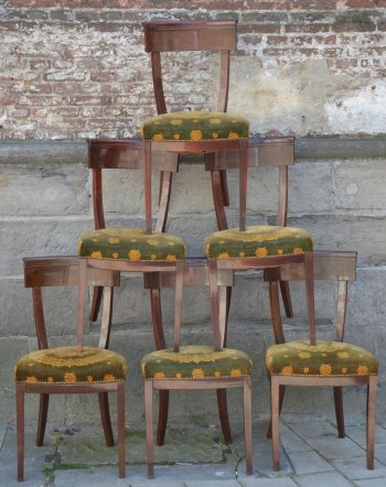6 Mahogany Chairs