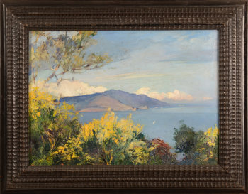 Jules Van Biesbroeck View on Capri