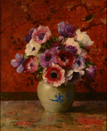Willy Van Riet Anemones