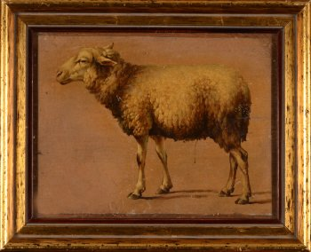 Eugene Verboeckhoven (circle of) sheep